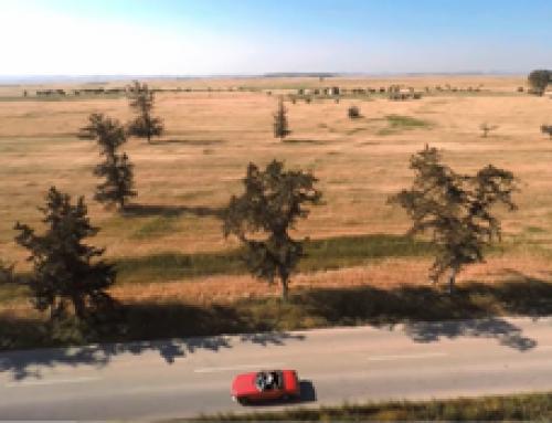 Bora Öztoprak – Yemin Et (Official Video)